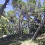 Photo of Camping du Garlaban