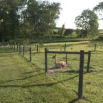 Foto de Airy Hill Farm B&B