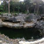 The pool (cenote)