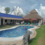 piscine de la guesthouse