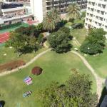 Jardines del hotel, vista desde la habitación
