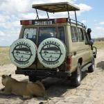 Tanzania Expeditions