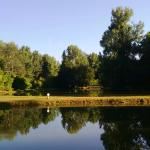 Lakes in the grounds