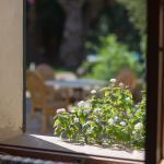 Petit Hotel Rural Son Jorda - Exterior