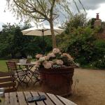 Lovely lunch out in beautiful walled garden