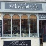 The Wish Cat Cafe