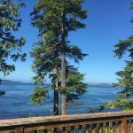 Foto de Hidden Cove Lodge