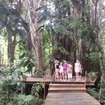 Foto de Matanivusi Surf Resort