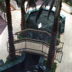 Foto de Embassy Suites by Hilton Houston - Near the Galleria
