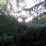 Foto de The Evergreens on Fall River