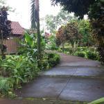 Photo de Las Cabanitas Resort