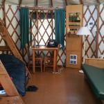 Yurt 48