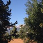 Foto de BEST WESTERN Ptarmigan Lodge