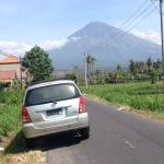 Wayan Merta - Private Tour