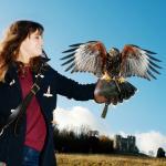 Hawk Walks in Bath