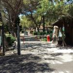 Photo of Camping San Martino