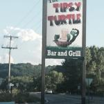 Tipsy Turtle
