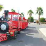 ViewPoint Train!