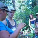 Cultural Tree Hike