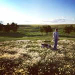 Foto de Buffalo Gap Guest Ranch and Trail Head