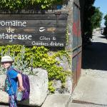 Photo de Domaine de Chantageasse