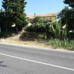 Photo de Agriturismo Conero