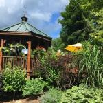 The wonderful Inn at Weston