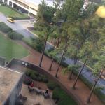 Foto de Sheraton Atlanta Airport Hotel