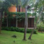 Foto de Palm Paradise Cabanas