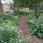 Yerkes garden