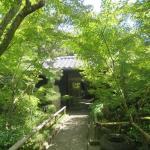 Matsuyma Art Museum