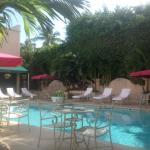 Foto de The Chesterfield Palm Beach