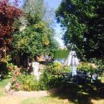 Photo of The Village Motel