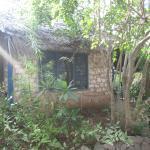 Foto de Blue Monkey Beach Cottages