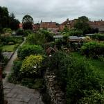 Eden House B&B - View of Garden from Bedroom 1 is great. Relaxing to watch the various wild bird