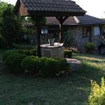 Photo of Winepalace