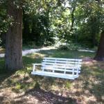 Shady bench swing