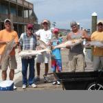 Visitas guiadas de pesca