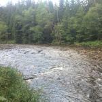 Otava river three minutes' walk from the hotel