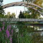 Au Gres City Park