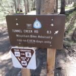 take this trail
