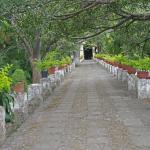Photo de Borda Gardens (Jardin Borda)
