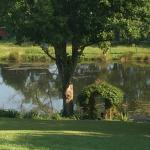The pond at Vanquility Acres Inn begs to be strolled around