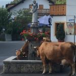 local tradition