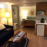 Living room area with kitchenette and TV