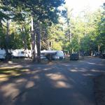 Foto de Traverse City State Park