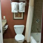Photo de Holiday Inn Hotel & Suites Rochester - Marketplace