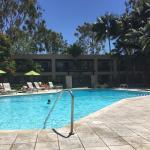 Pool - Hyatt Regency Newport Beach Photo