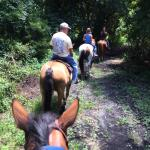 Trail rides $50 per hour per person. Ages 10 and up. Private guided tours over 100 acres.  Reser