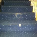 carpets on all stairways we were up 4 flights of stairs & all had holes like these